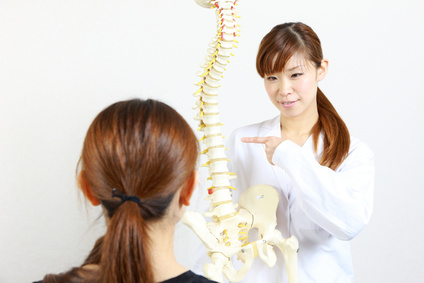 Chiropractor using a plastic model to explain to her patient.